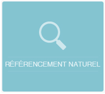 visuel_referencement_naturel